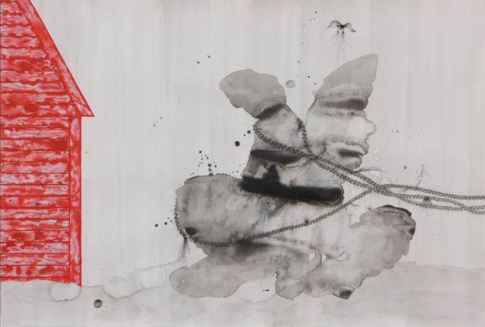 Pulled Forces (Diptych detail), 2012, Ink & aquarelle on paper, 75 x 110 cm