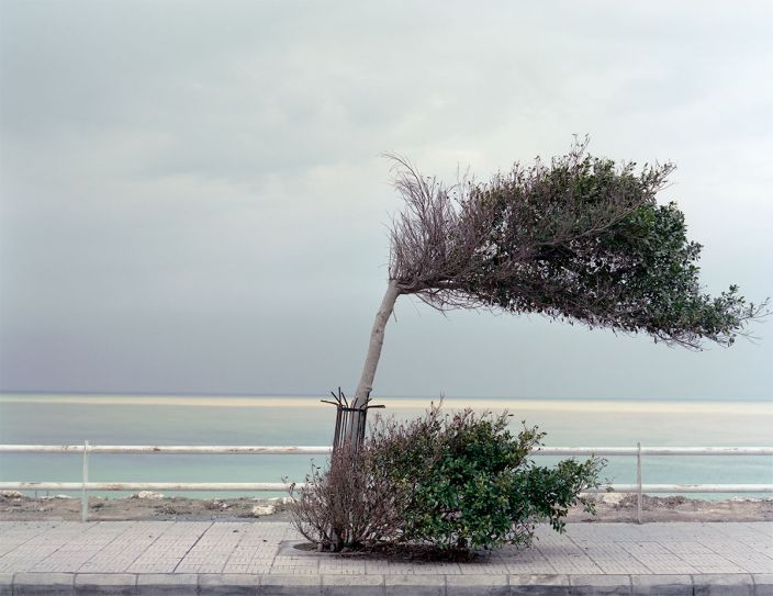 Beirut Untitled (Detail), 2012, Digital pigment print, Edition of 25