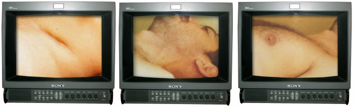 Ali Cherri, Triptych - Studies from a Human Body, 2012, 3-channel video installation, Edition of 5